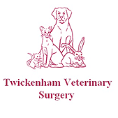 Twickenham Vetinary Surgery - Twickenham. NJC building consultants provided: house renovation - office refurbishment